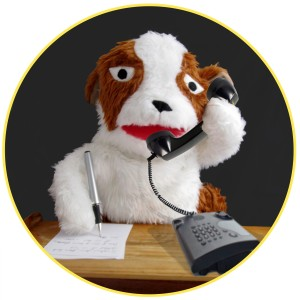 Picture to Puppet contact PR manager dog on the phone
