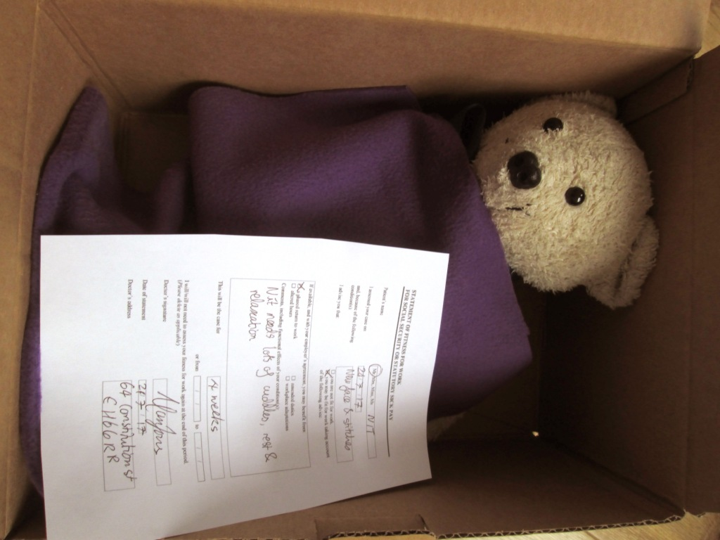 Teddy in a box